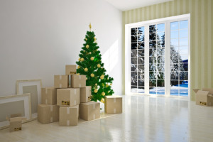 storage facility for Christmas decorations